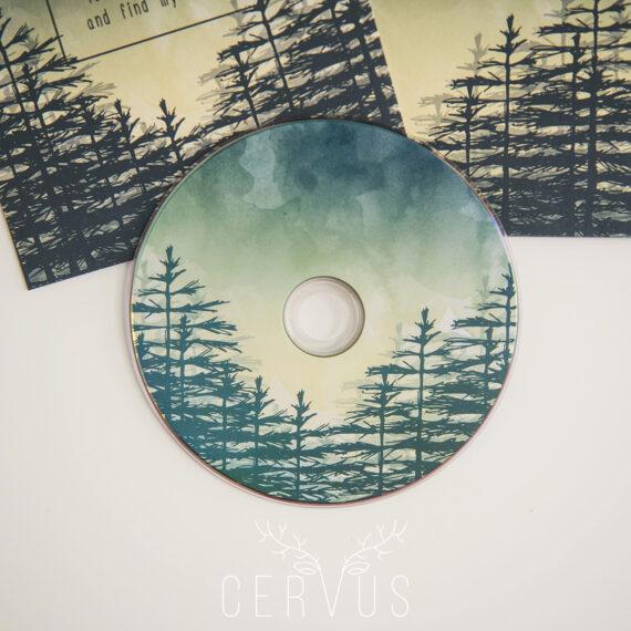Płyta DVD Las Forest Fog