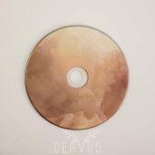 Brązowa Płyta DVD Chwile
